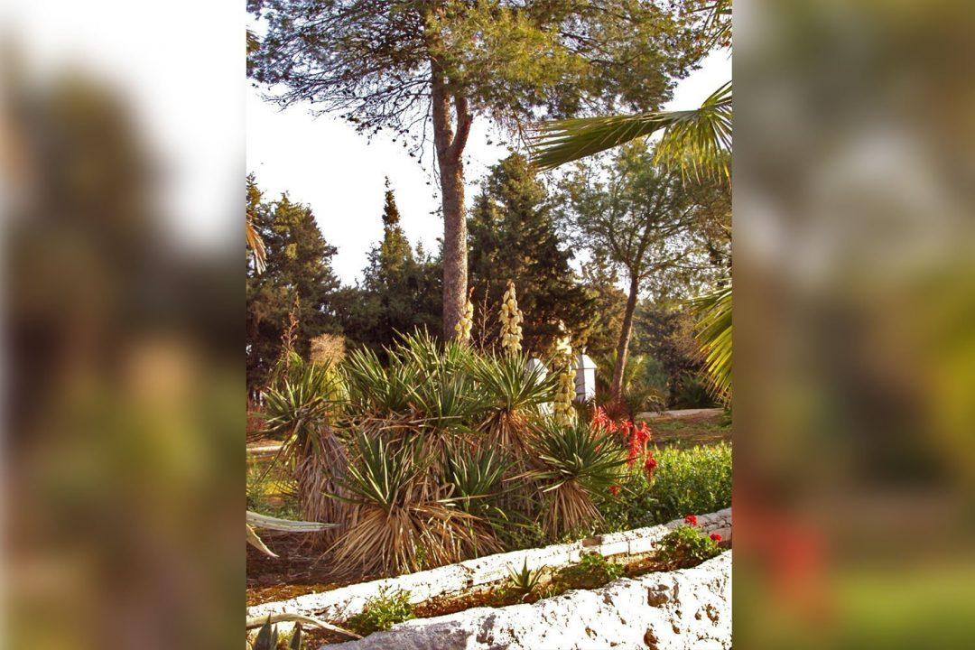 jardines_5-mod